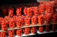 Tomatoes in  Borough Market